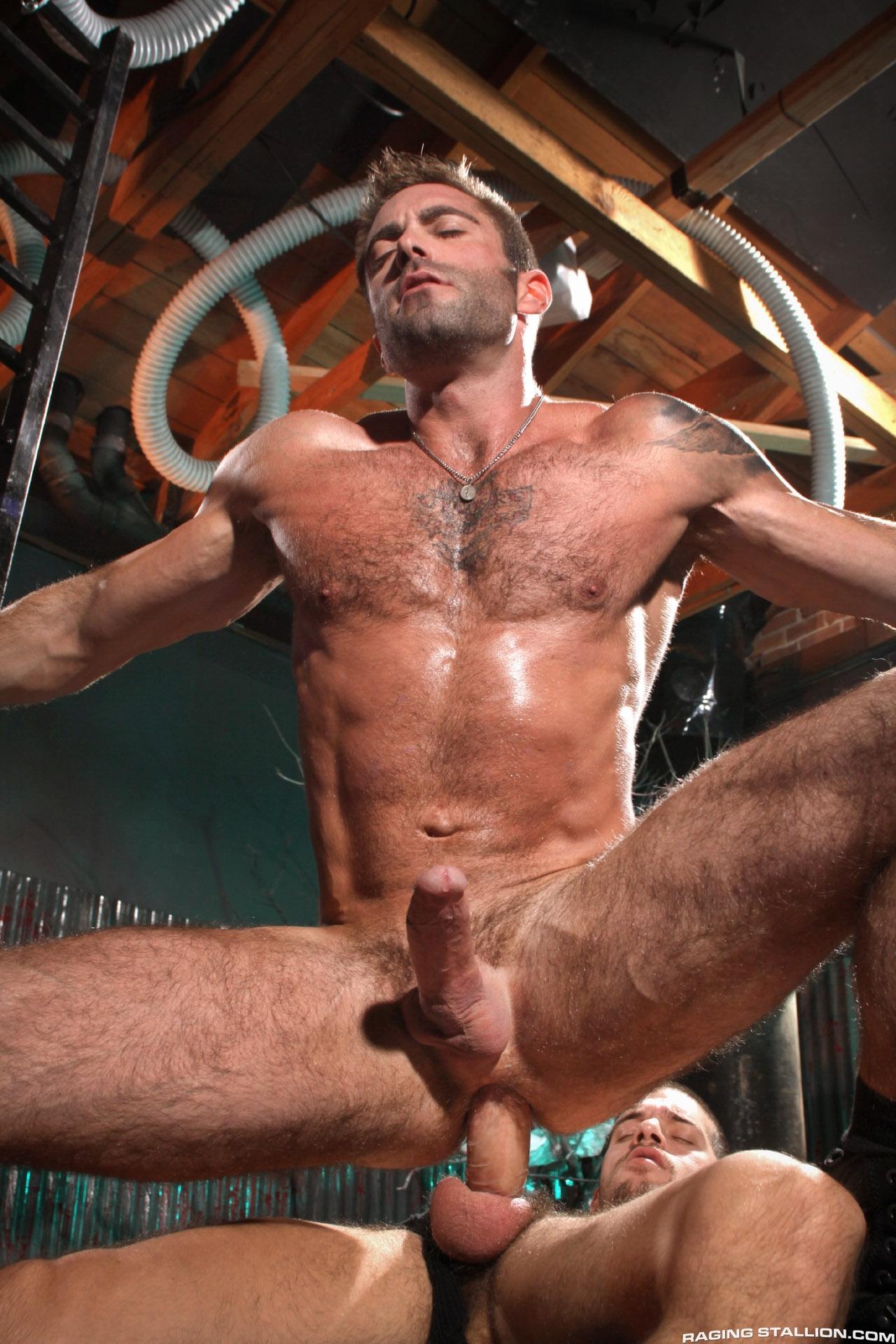Porn Gay Cock