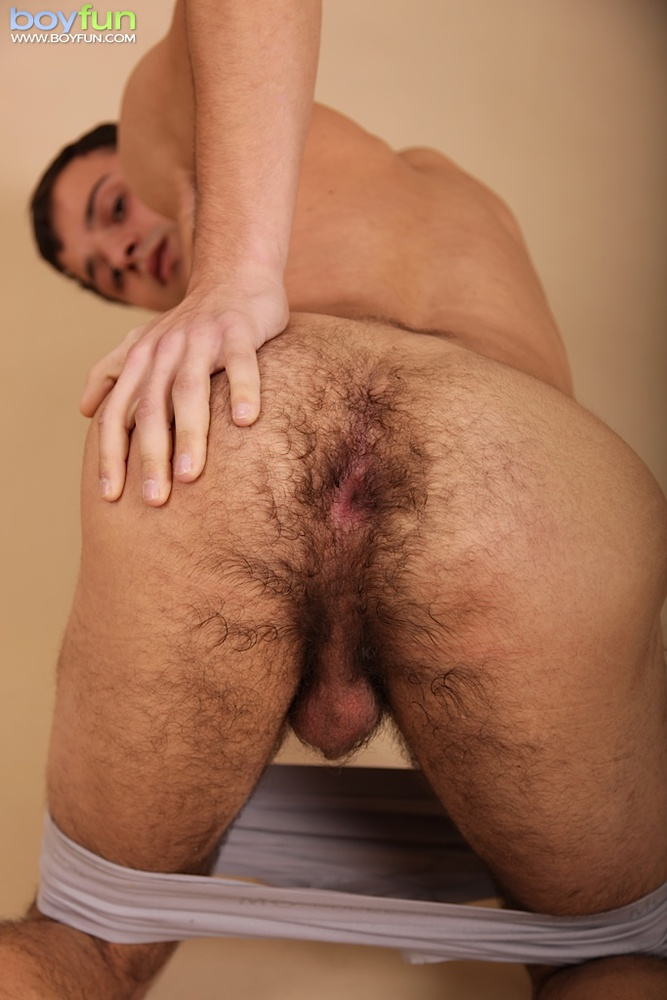 hairy gay hairy gay muscle hairy ass gay men stripped