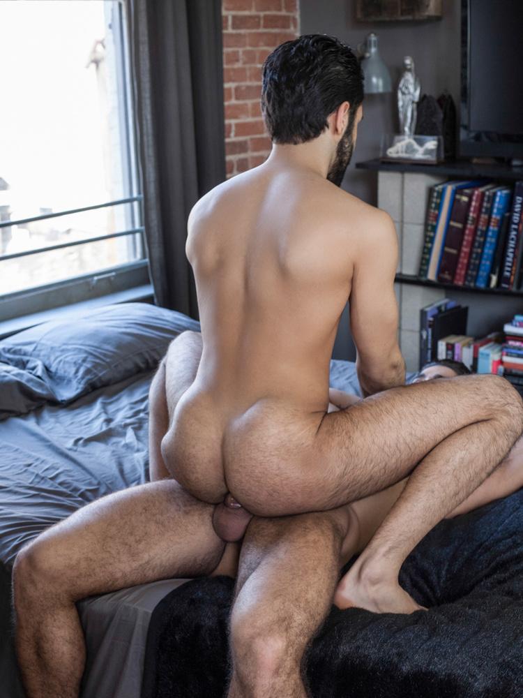 Sexy gay porn stars