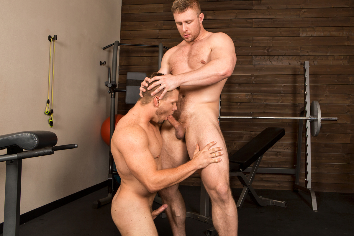 Free Gay Muscle Porno